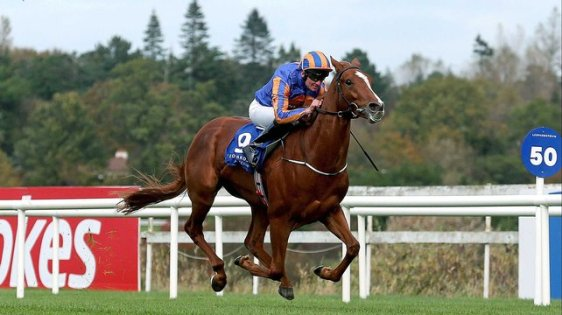 Giovanni Canaletto streaking to an easy success at Leopardstown.